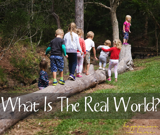 What Is The Real World?