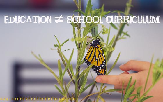 Education ≠ School Curriculum