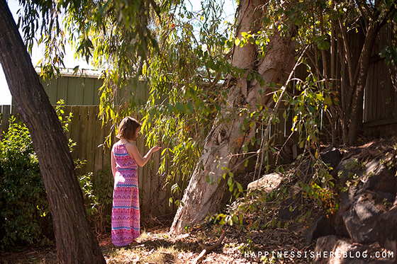 Everyday Unschooling: Studying Trees