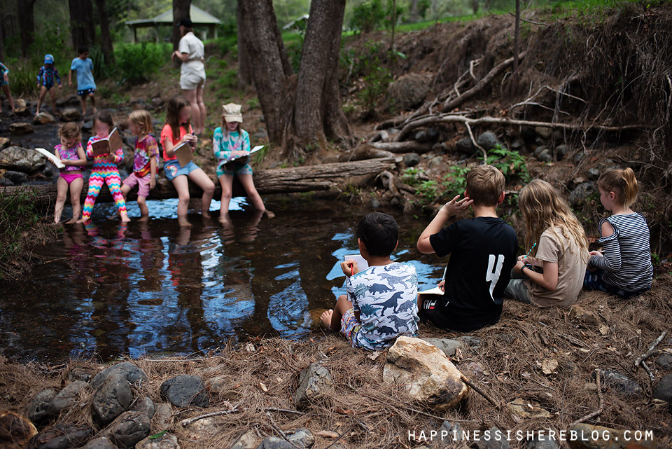 Nature Journaling: Adopt a Creek for a Year