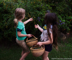 A Day in the Life of an Unschooling Family